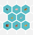 set of alive icons flat style symbols with deer vector image vector image