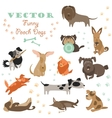 Set of funny Mixed Breed dogs vector image vector image