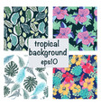 set tropical background exotic leaves and vector image vector image