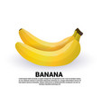 banana on white background healthy lifestyle vector image