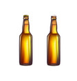 brown beer bottle vector image