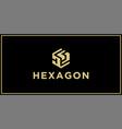 ds hexagon logo vector image vector image