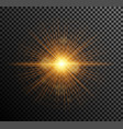 golden light vector image vector image