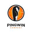 penguin and sun logo design vector image vector image