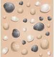 sand seamless pattern with stones vector image vector image