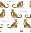 seamless pattern with cartoon jaguars vector image
