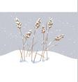 wild cereals under snow vector image vector image