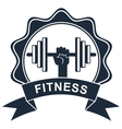 fitness logo black vector image