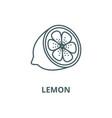lemon line icon linear concept outline vector image