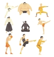 Martial Arts Fighters Performing Different vector image