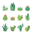 cartoon cactus and succulents cartoon set vector image vector image