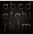 Golden alphabet Set of golden letters isolated on vector image vector image