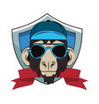 hipster monkey cool sketch vector image vector image