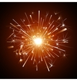 orange firework vector image