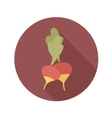 Radish flat icon with long shadow vector image