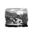 rocky falls vector image vector image