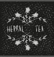 arrangement of herbs and flowers vector image vector image