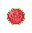 circle of juicy watermelon with seeds vector image vector image