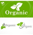 Concept spring banner vector image