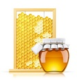 jar with honey and honeycomb vector image vector image