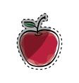 Juicy apple fruit vector image vector image