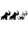 mammoth on white vector image vector image