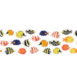 reef fish seamless border vector image vector image