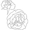 two roses outline silhouette vector image vector image