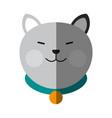 cat cartoon pet animal icon image vector image