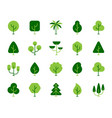 green tree spring plant birch oak icon set vector image vector image