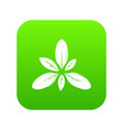 leaf icon green vector image