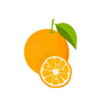 orange with leaves and slice of orange flat vector image