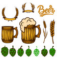 set beer design elements wheat spikelets beer vector image vector image