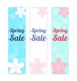 BG Banner background Spring sale cherry blossom vector image