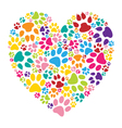 Heart paw print vector image vector image
