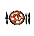 pizza on isolate background vector image