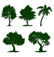 set tree hand drawn painted vector image