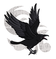 Flying Raven vector image vector image
