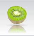 kiwi polygonal with reflection vector image vector image