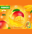 mango juice advertising package design vector image