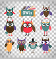 Owl icons set on transparent background