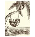 beach palm tree and hammock sea view vector image