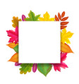 banner with bright autumn falling leaves vector image