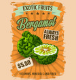 bergamot fruit with price tag grocery store poster vector image vector image