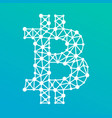 Bitcoin crypto currency sign with a net