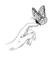 butterfly on finger girl hand ink sketch vector image vector image