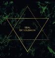 star david or seal solomon jewish sign vector image