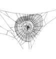 hand drawn spiderweb vector image
