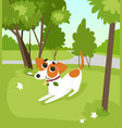 cute jack russell terrier dog running with stick vector image vector image