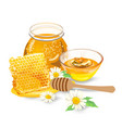 honey with wood stick and flowers vector image